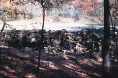 Maple Hills Dump 1965 to 1970 -2