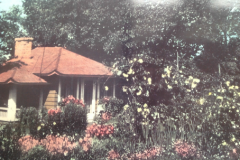 Walden Tea House 1950's